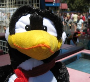 Penguin at a picnic