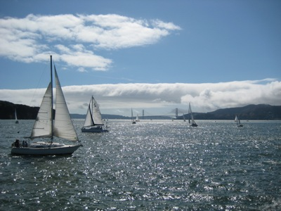 Sailboats on the bay with the Golden Gate Bridge in the background