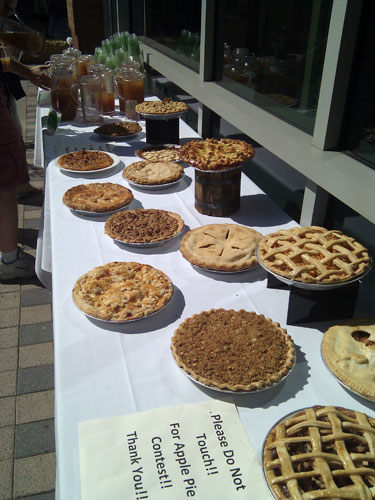 Table full of apple pies