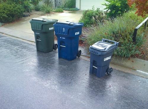 large organics bin, large recycling bin, and small garbage bin.